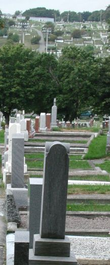 large cemetery